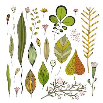 Deja imágenes de vectores dibujados a mano. ilustración otoño establecido para la decoración