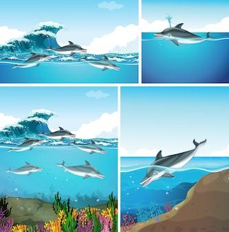 Delfines nadando en el océano en diferentes escenas.