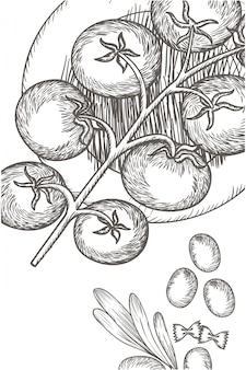 Delicioso tomate en dibujo aislado icono