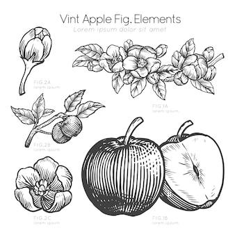 Descripción dibujada a mano de manzana y flores de manzana
