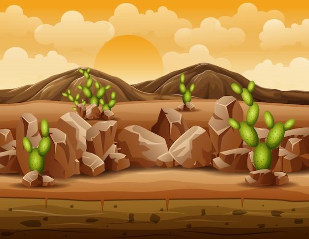 Desierto colina montaña con paisaje de rocas y cactus