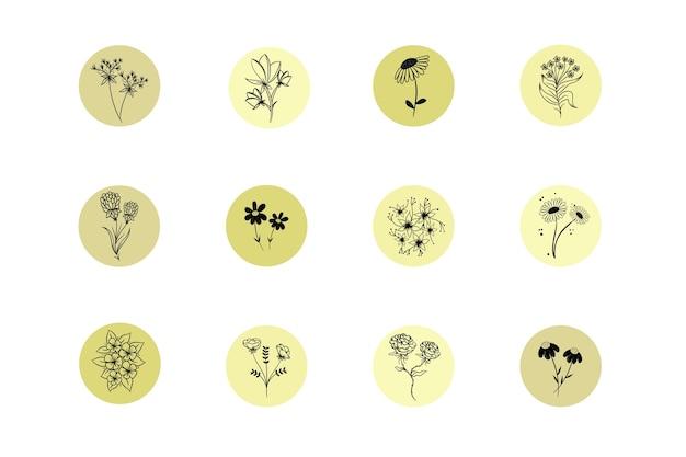 Destacados de historias florales dibujadas a mano en instagram
