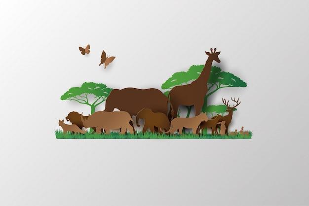 Dia mundial de la vida silvestre