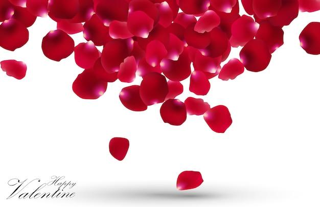 Día de san valentín con pétalos de rosa sobre fondo blanco