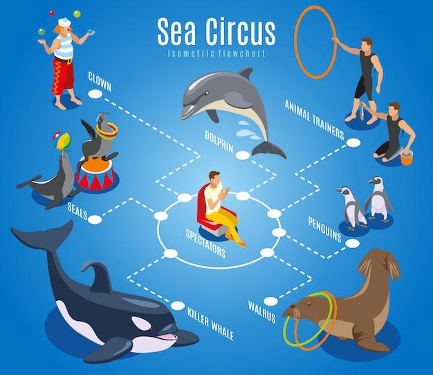 Diagrama de flujo de circo marino con entrenadores de animales espectadores focas morsa pingüinos delfín orca ilustración isométrica