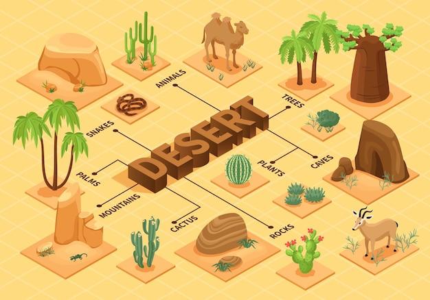Diagrama de flujo del desierto con plantas isométricas, rocas y animales.