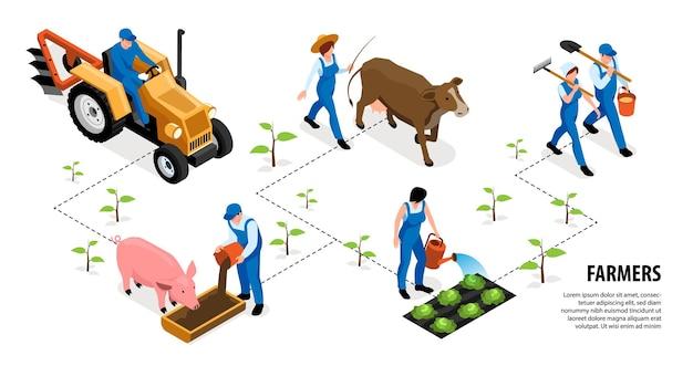 Diagrama de flujo de granjero isométrico