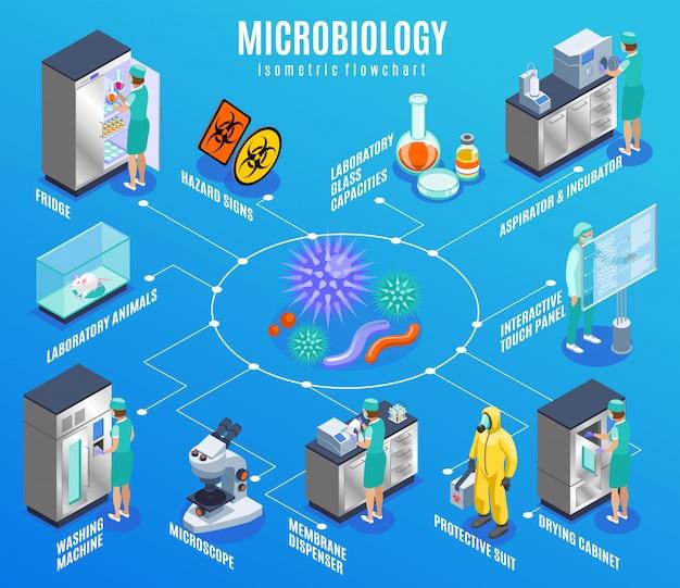 Diagrama de flujo isométrico de microbiología con refrigerador, laboratorio, animales, lavadora, microscopio, dispensador de membrana, traje protector y otras descripciones, ilustración