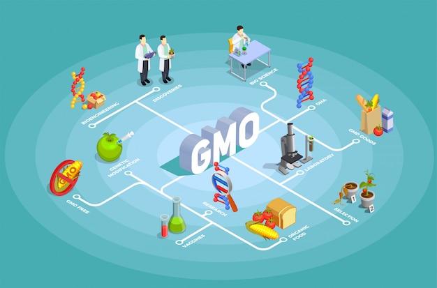 Diagrama de flujo isométrico de organismos genéticamente modificados
