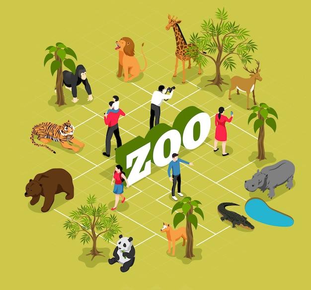 Diagrama de flujo isométrico del zoológico con animales cerca de los árboles y la piscina y visitantes en oliva