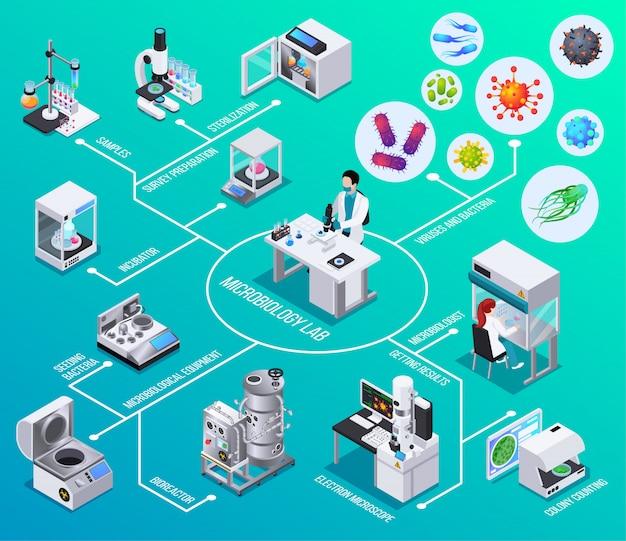 Diagrama de flujo de laboratorio de microbiología biorreactor microscopía electrónica sembrando bacterias contando colonias elementos isométricos
