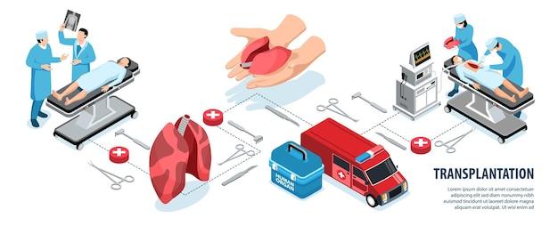 Diagrama de flujo de órganos humanos de donante isométrico