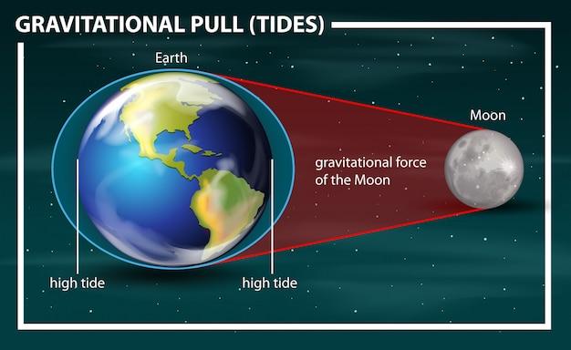 Diagrama de las mareas de tracción gravitacional
