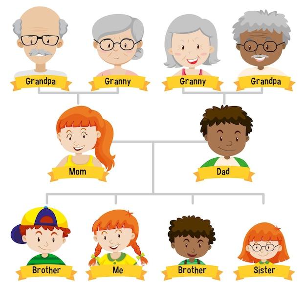 Diagrama que muestra el árbol genealógico de tres generaciones.