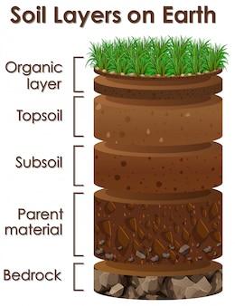 Diagrama que muestra las capas del suelo en la tierra