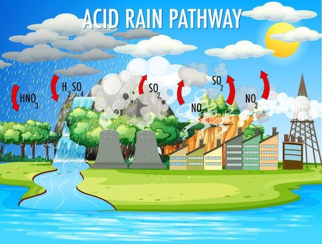 Diagrama que muestra la vía de la lluvia ácida