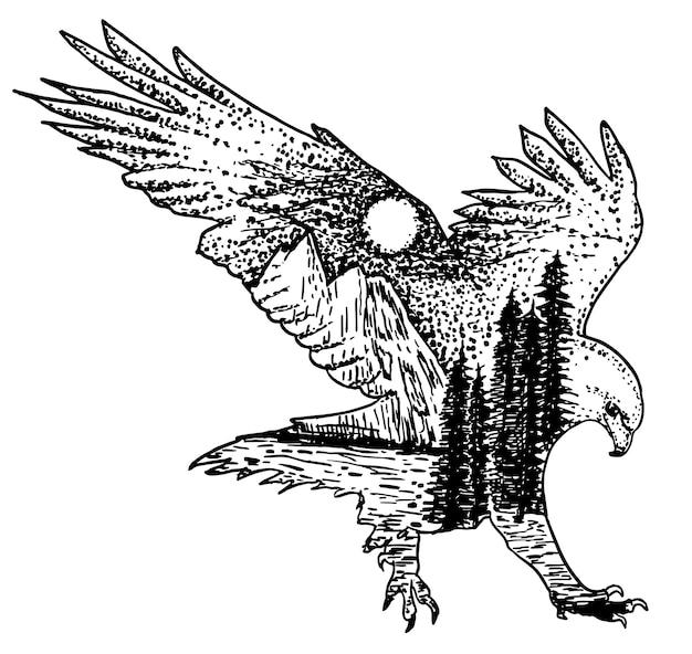 Dibujado a mano de águila decorativa a mano.