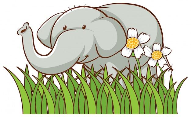 Dibujado a mano aislado de elefante lindo