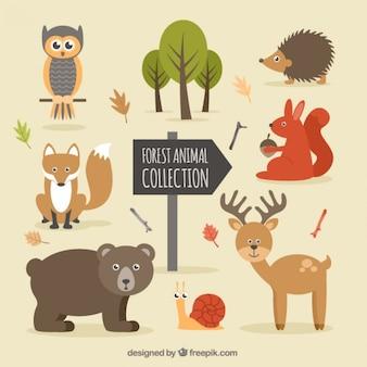 Dibujado a mano animales del bosque agradable y la naturaleza