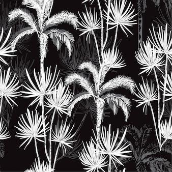 Dibujado a mano blanco y negro monótono línea bosquejo palmeras