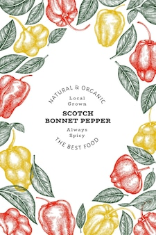 Dibujado a mano boceto estilo scotch bonnet pepper