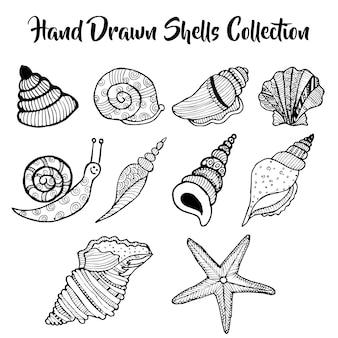 Dibujado a mano bajo la colección de conchas de agua
