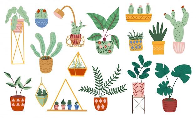 Dibujado a mano conjunto de perchas de macramé para plantas de interior