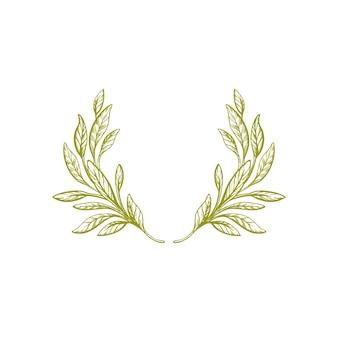 Dibujado a mano corona de olivo hoja verde rama vintage frontera aislada