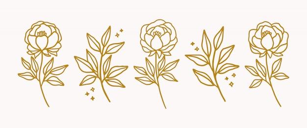 Dibujado a mano elementos de logotipo floral de oro