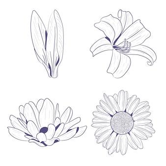 Dibujado a mano flores de primavera