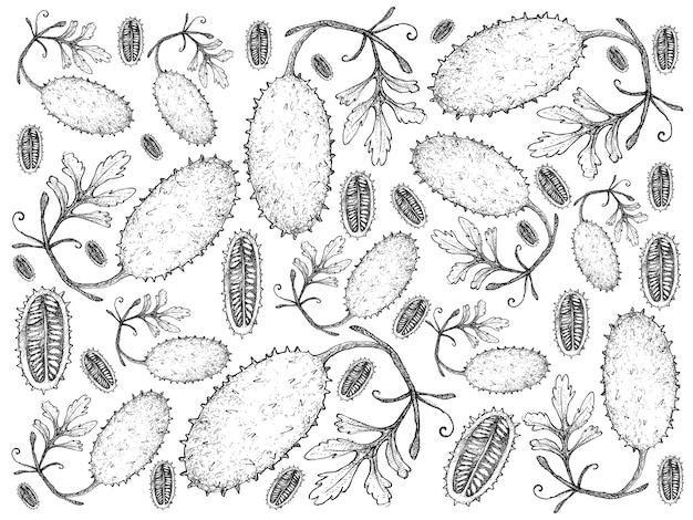 Dibujado a mano de fondo fresco de frutas del pepinillo del oeste de india