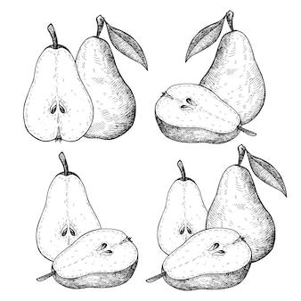 Dibujado a mano fruta pera