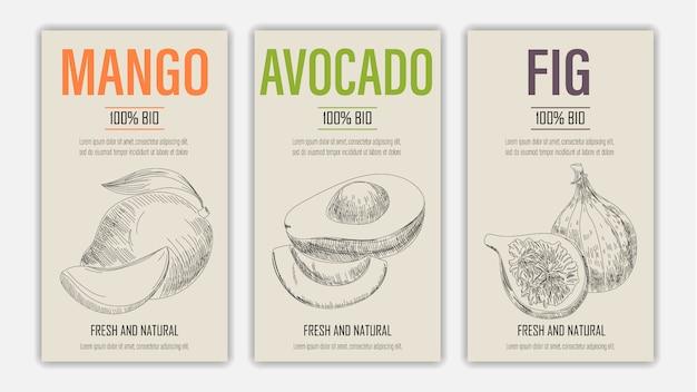 Dibujado a mano frutas de mango, avacado y carteles de higos. concepto de comida sana de estilo vintage.