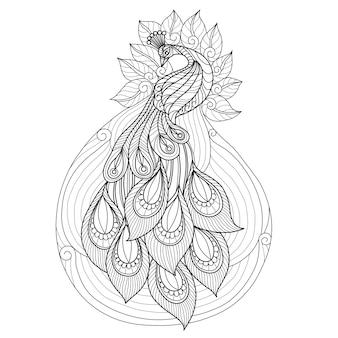 Dibujado a mano hermoso pavo real