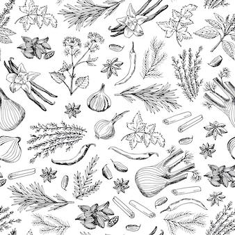 Dibujado a mano hierbas y especias de fondo o patrón