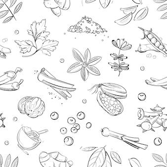 Dibujado a mano hierbas y especias frescas doodle