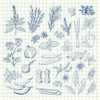 Dibujado a mano hierbas y especias en la ilustración de la hoja celular
