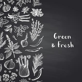 Dibujado a mano hierbas y especias sobre fondo de pizarra negra