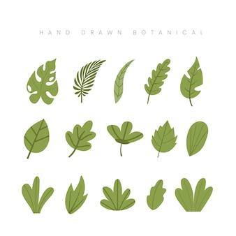 Dibujado a mano la hoja botánica de primavera deja ilustración floral verde