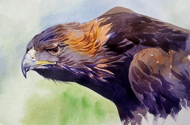 Dibujado a mano ilustración acuarela águila