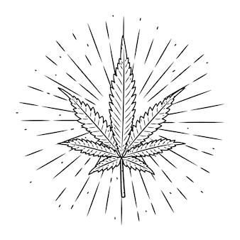 Dibujado a mano ilustración con hoja de marihuana.