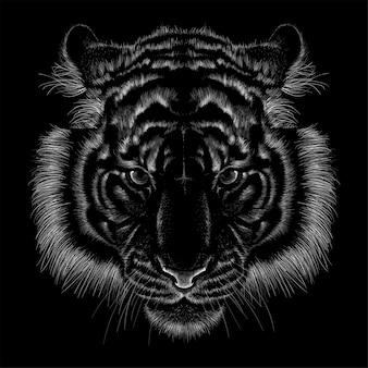 Dibujado a mano ilustración en tiza estilo tigre