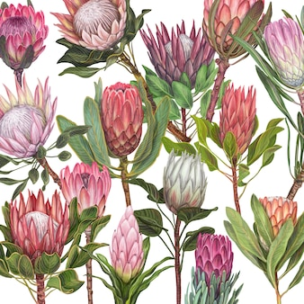 Dibujado a mano ilustración vectorial flor