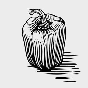 Dibujado a mano ilustraciones de estilo de grabado de paprica