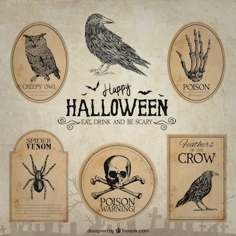 Dibujado a mano insignias de halloween