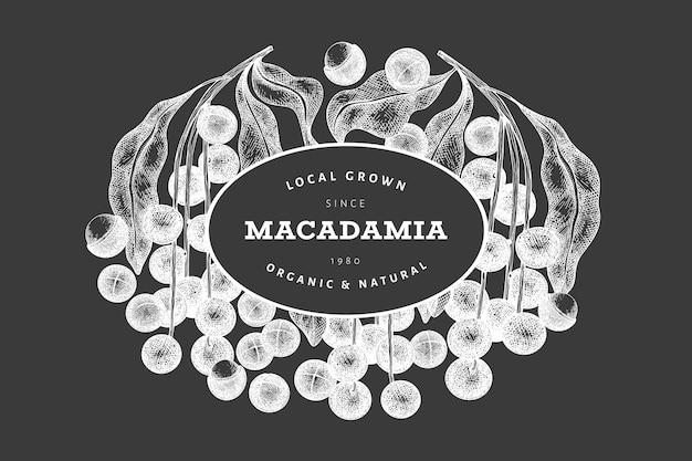 Dibujado a mano macadamia rama y plantilla de diseño de granos. ilustración de vector de alimentos orgánicos en la pizarra. ilustración de nuez vintage. banner botánico de estilo grabado.