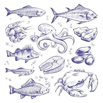 Dibujado a mano de mariscos. peces de mar ostras mejillones langosta calamar pulpo cangrejos gambas salmón mariscos mariscos naturales