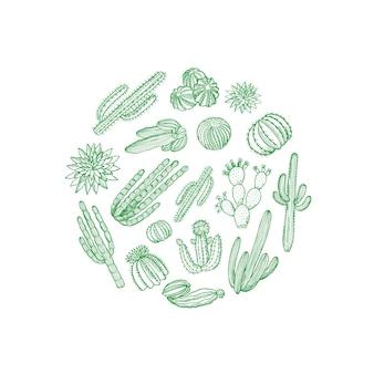 Dibujado a mano plantas de cactus del desierto en forma de círculo