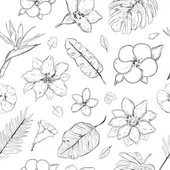 Dibujado a mano plantas exóticas de patrones sin fisuras