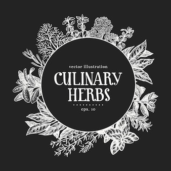 Dibujado a mano plantilla de etiqueta de hierbas culinarias.